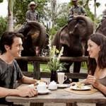 Kebun binatang – Bali Zoo Park