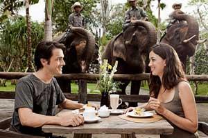 Kebun Binatang Bali Zoo Park