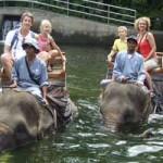 Elephant Safari – naik Gajah di Taro