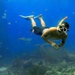 Rekreasi Snorkeling di Tanjung Benoa