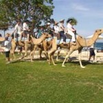 Photo-photo Bali Camel Safari