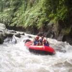 Serunya petualangan Rafting di Sungai Ayung