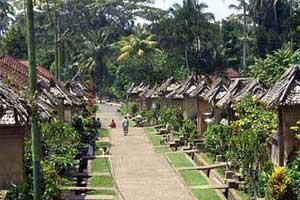 Rumah-rumah di Penglipuran