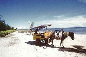 Sarana transportasi di Gili