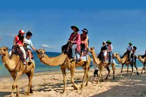 Camel Safari Bali