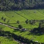 Paket Tour Bali Utara