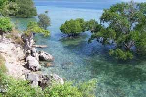 Zona perairan laut dalam dan dangkal