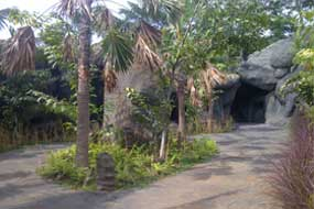 Goa di Taman Nusa